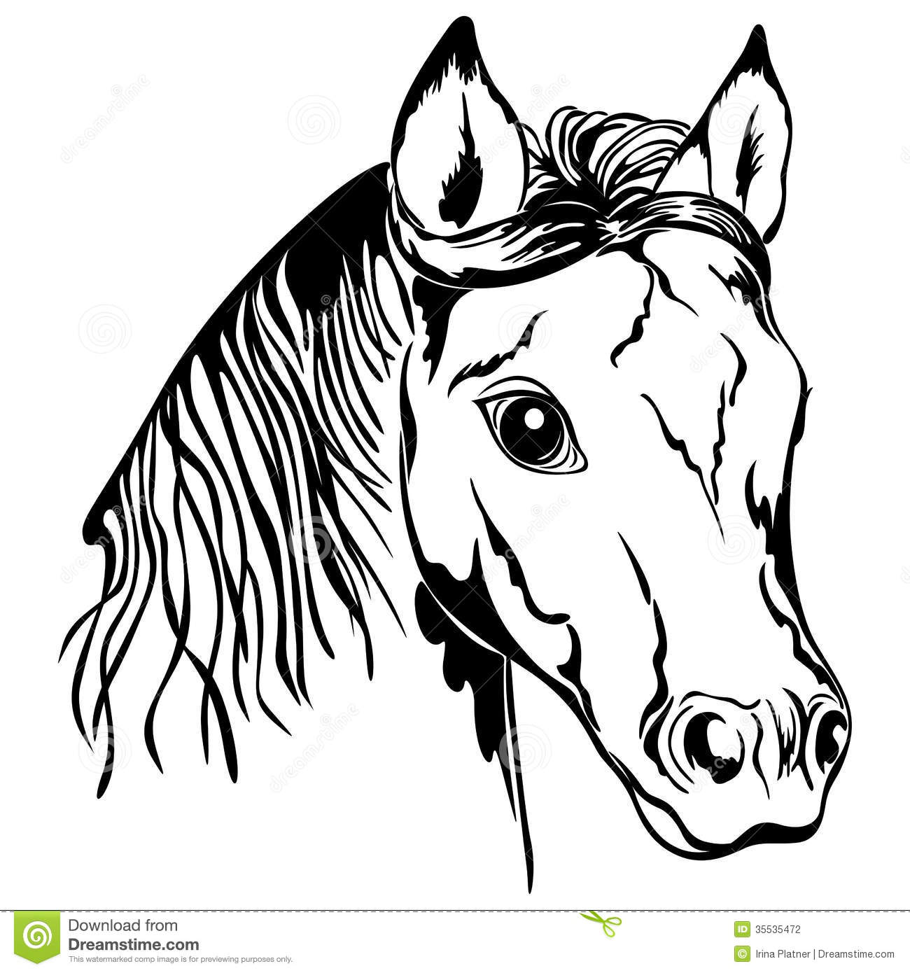 outline of horse head stock vector illustration of illustration
