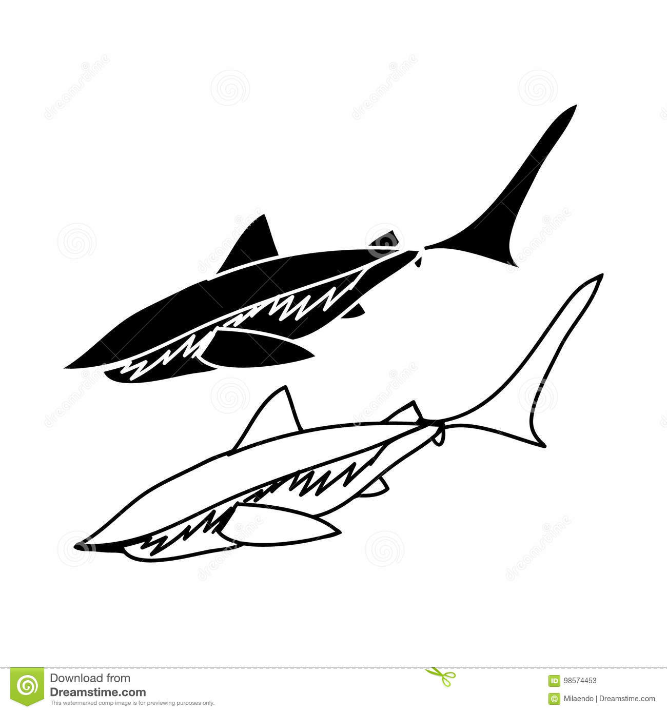 outline and shark silhouette stock vector illustration of nature