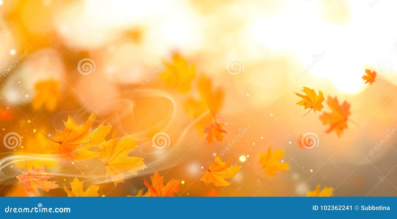 Outono Fundo outonal abstrato da queda com folhas coloridas