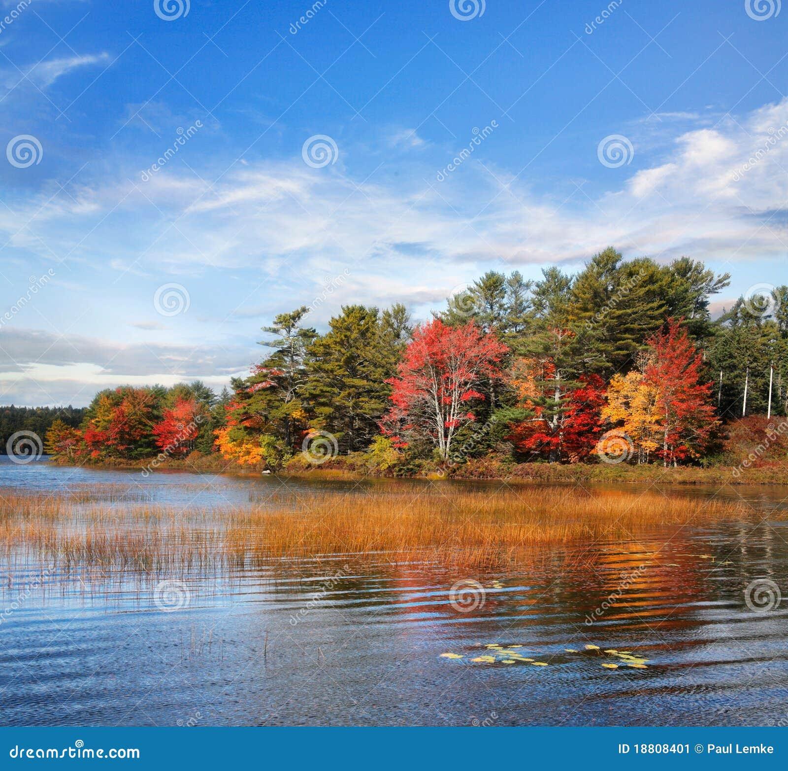 Outono na lagoa de Somes