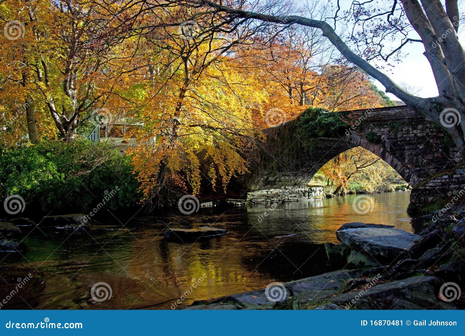 Outono no banco de Ogwen