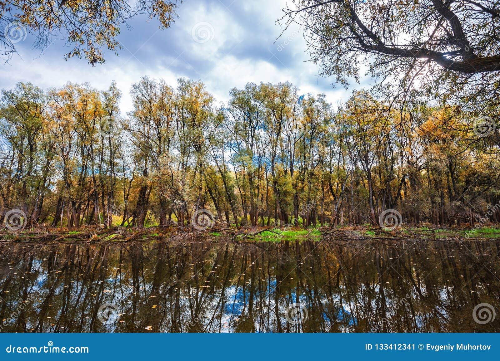 Outono no rio Sibéria ocidental