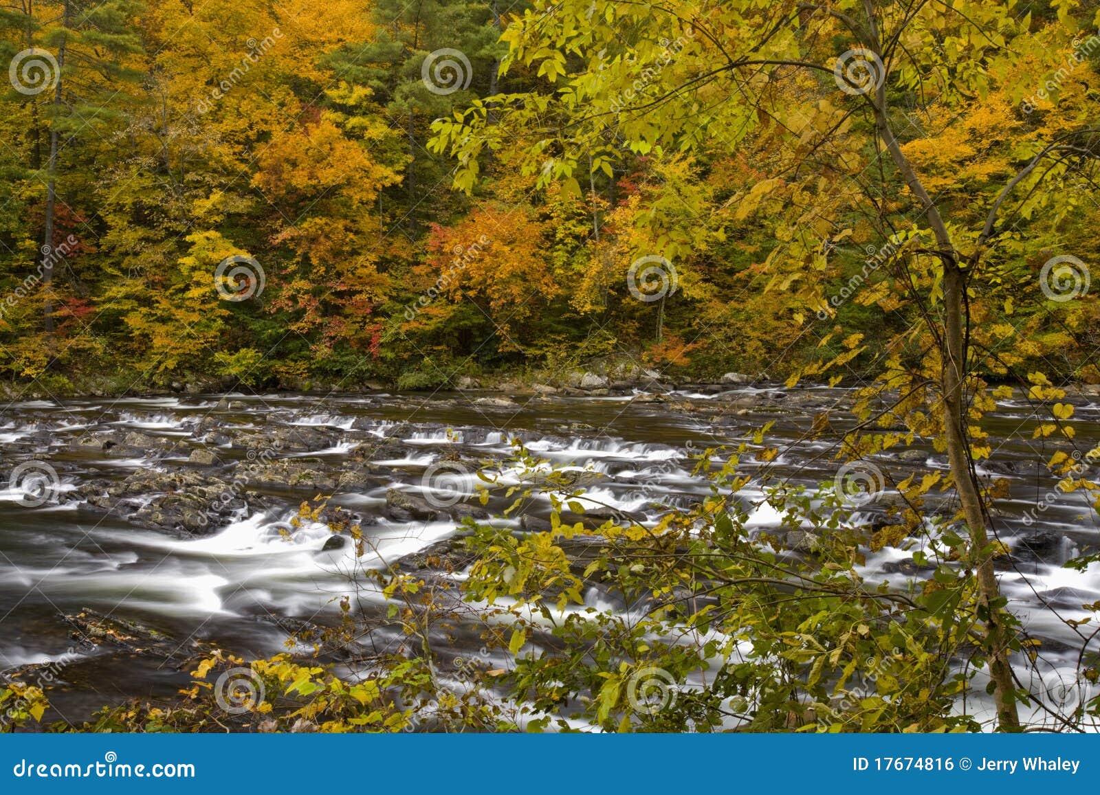 Outono, rio de Tellico, N-F Cherokee