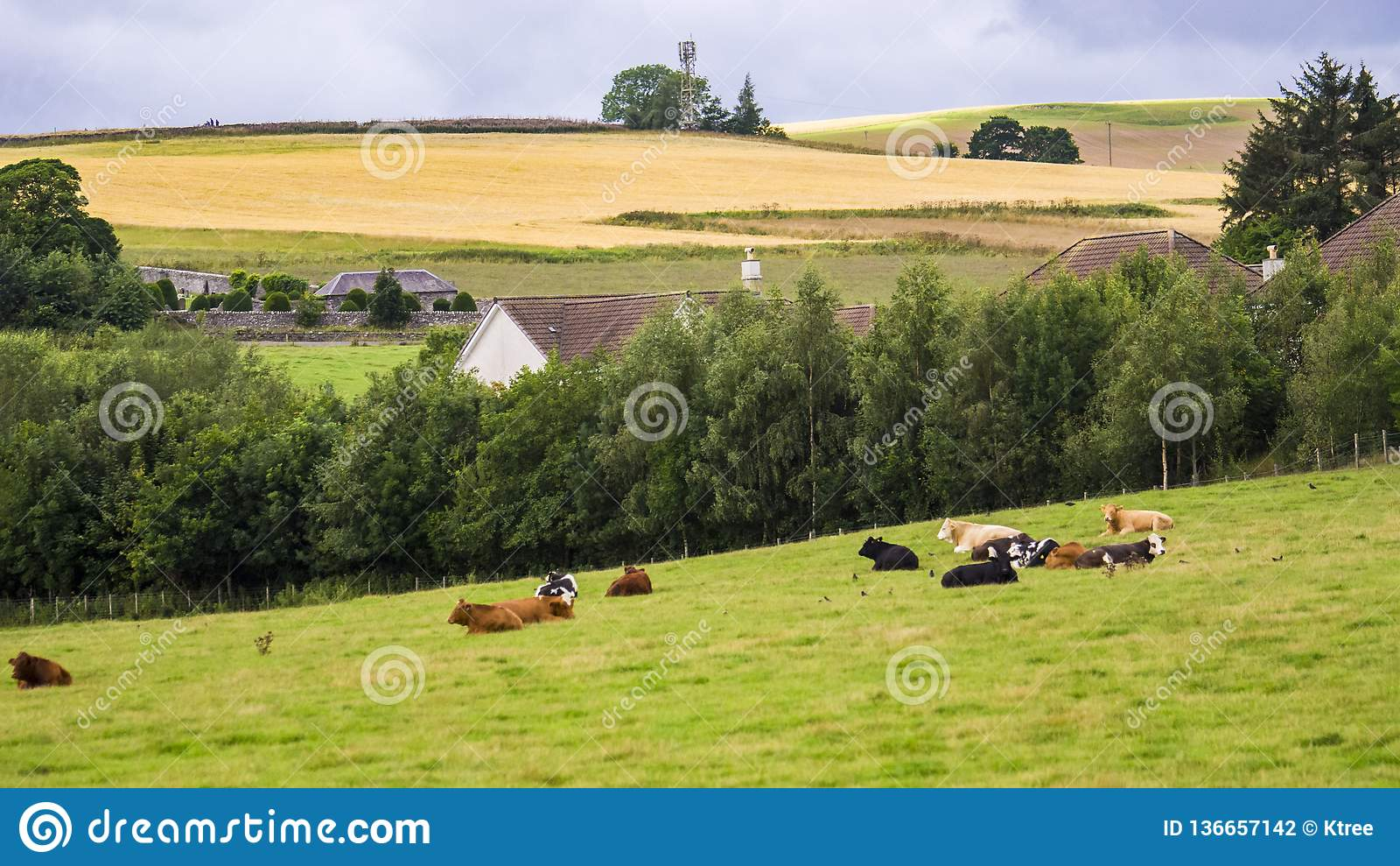 British pastoral scenery