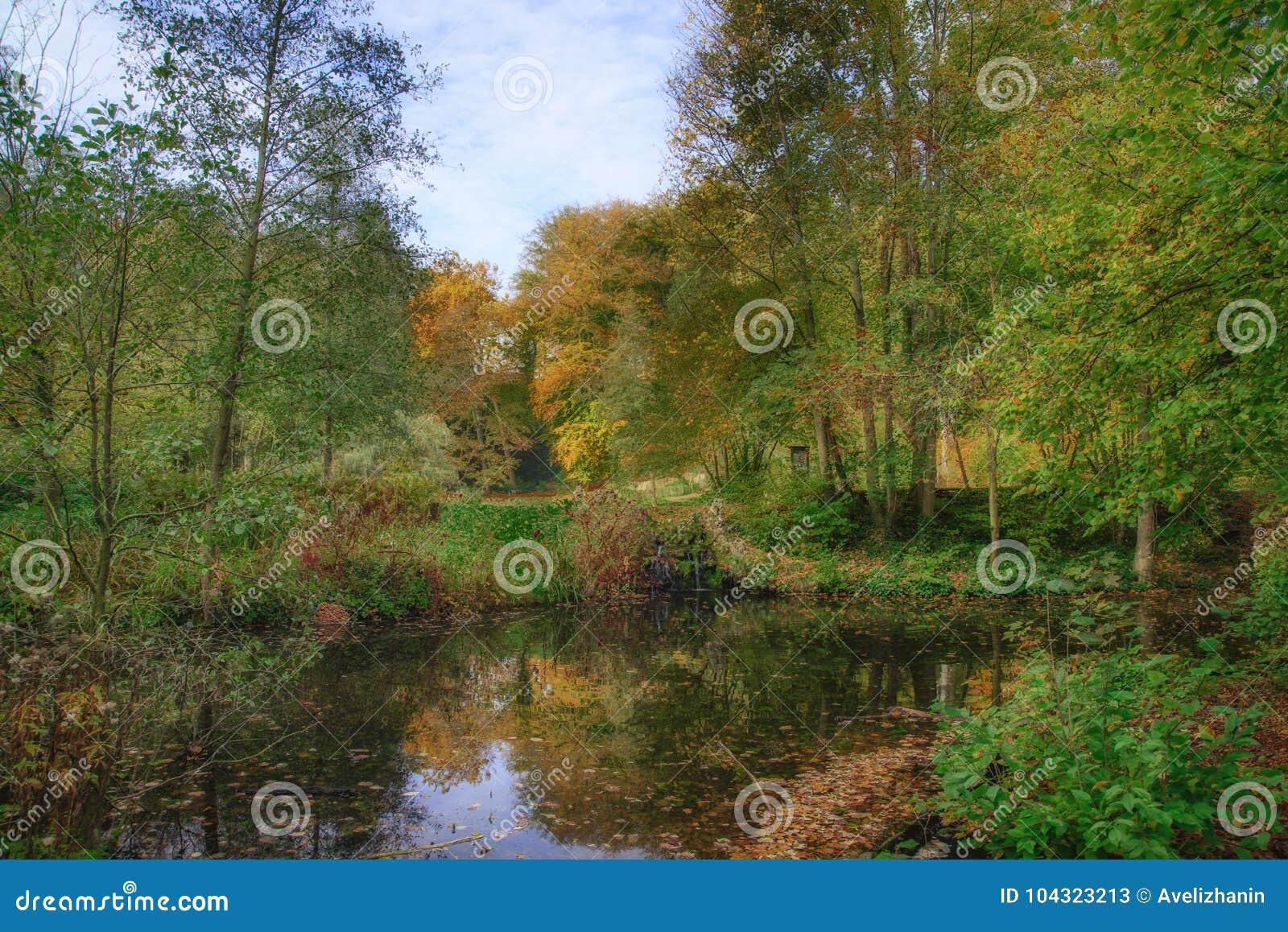 Outubro na floresta de Sonian