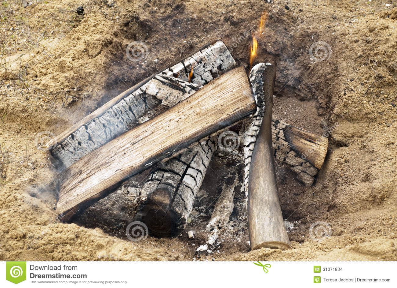 Ouvrez le feu de camp sur une plage