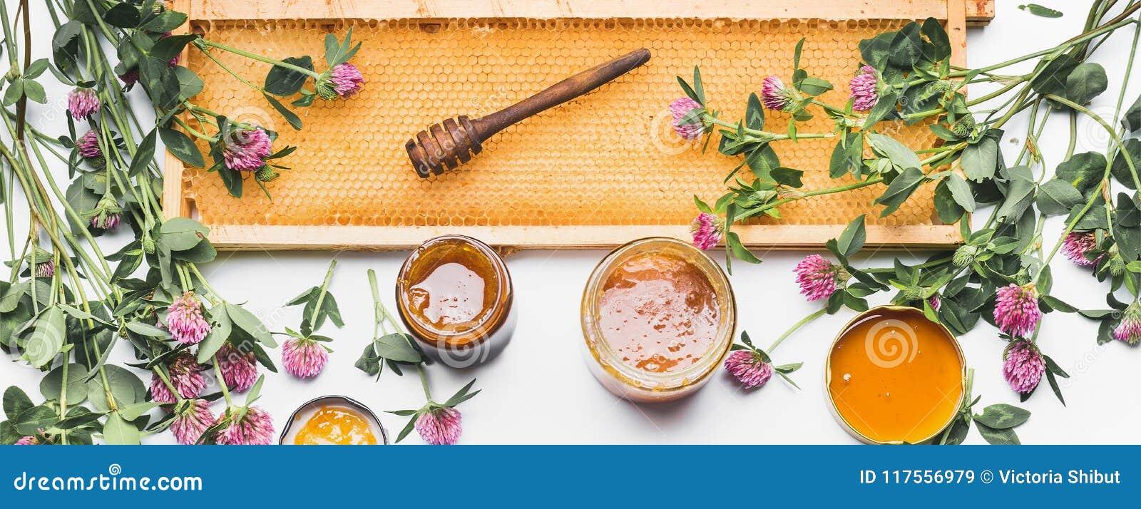 Ouvrez les pots de miel avec le plongeur, le cadre de nid d abeilles et les fleurs sauvages sur le fond blanc, vue supérieure