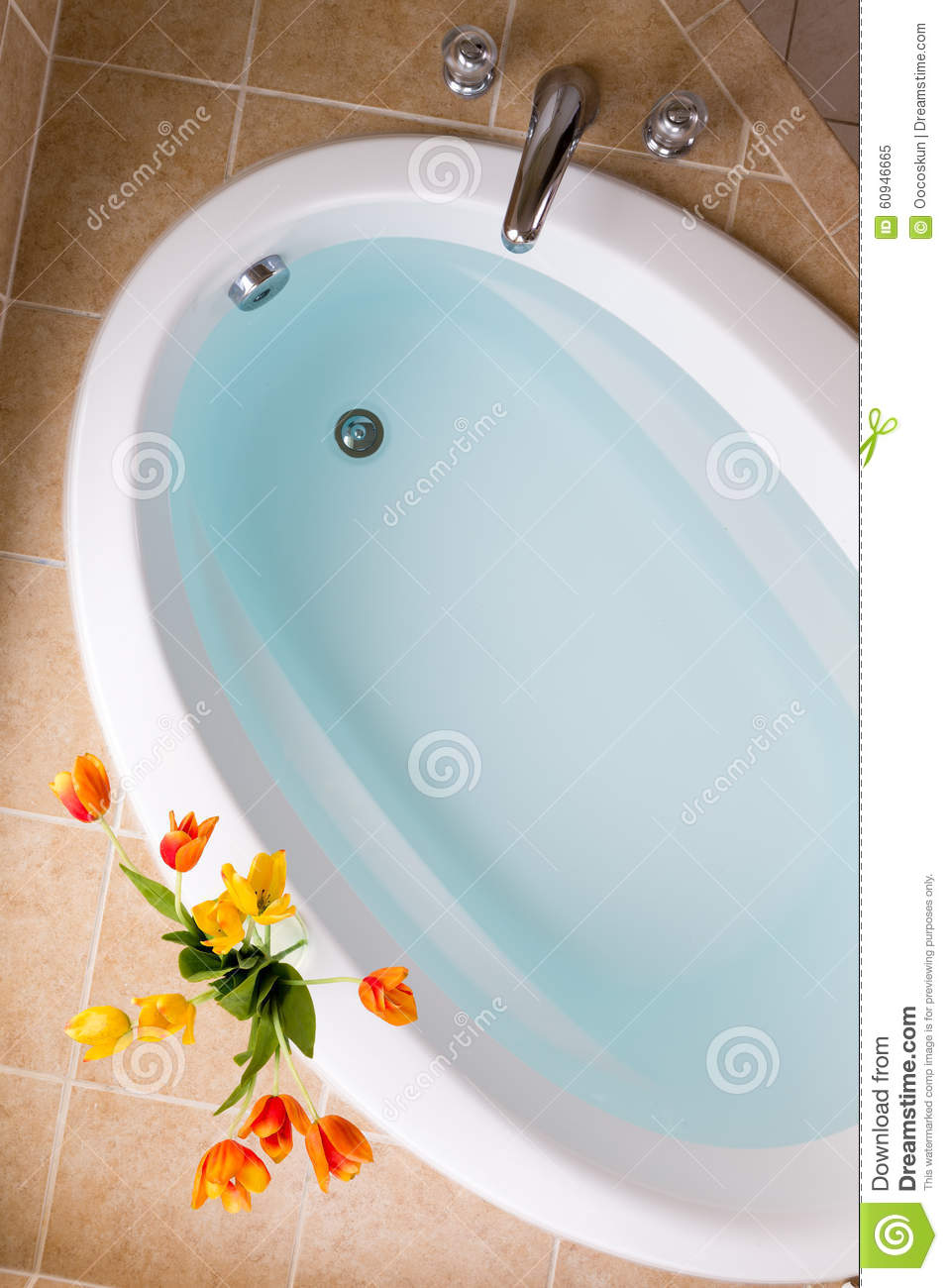 Oval Bathtub Filled With Clean Water Stock Image - Image of decor ...
