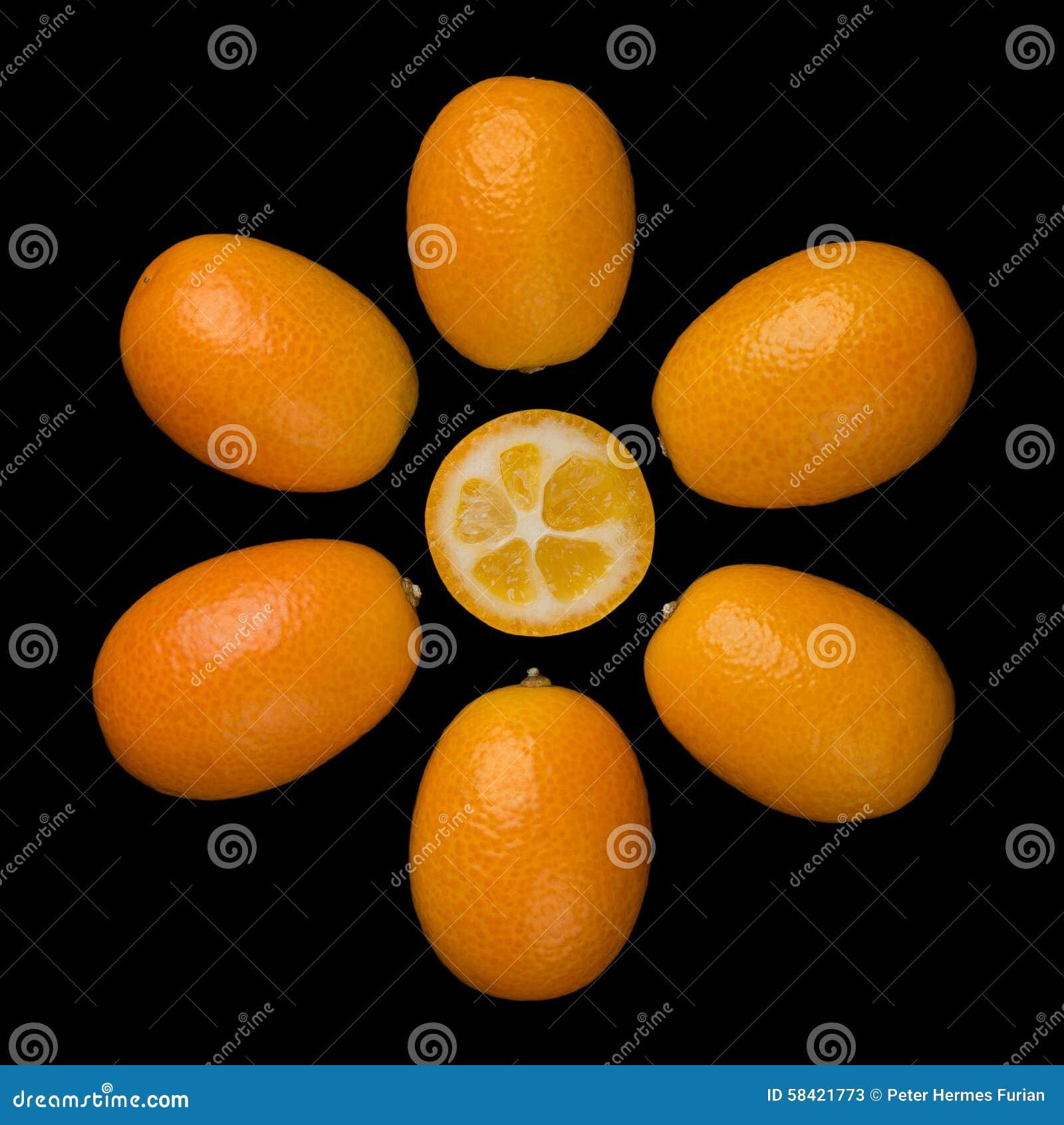 Oval Kumquats Forming A Sun Symbol On Black Background Stock Image