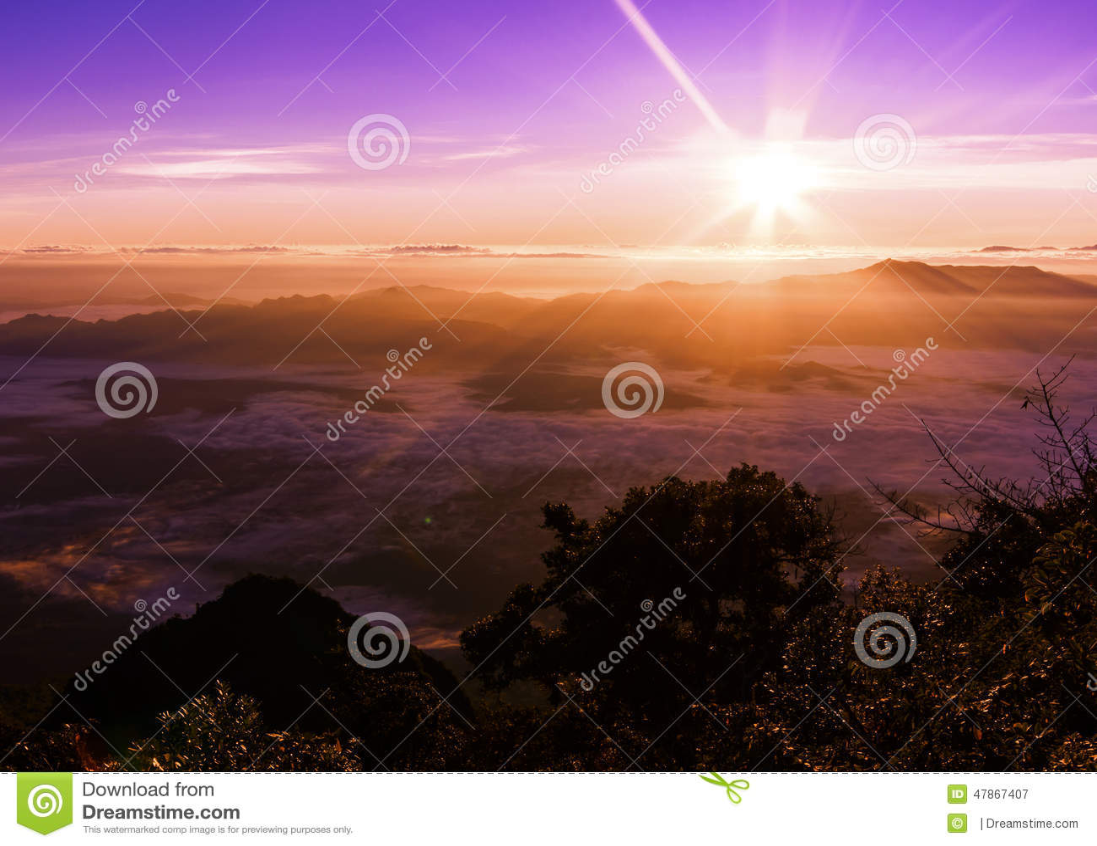 2195 ovanför område som doi för område för distorsion för chiangkottedao high highest har high highest inverterat level djurliv f