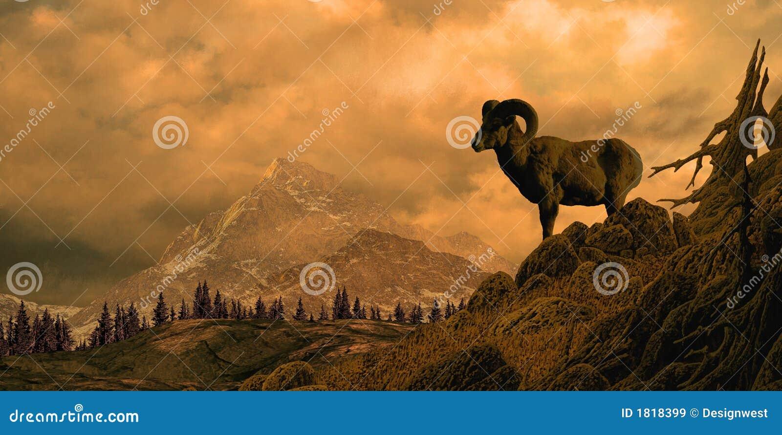 Ovejas de Bighorn en las montañas rocosas