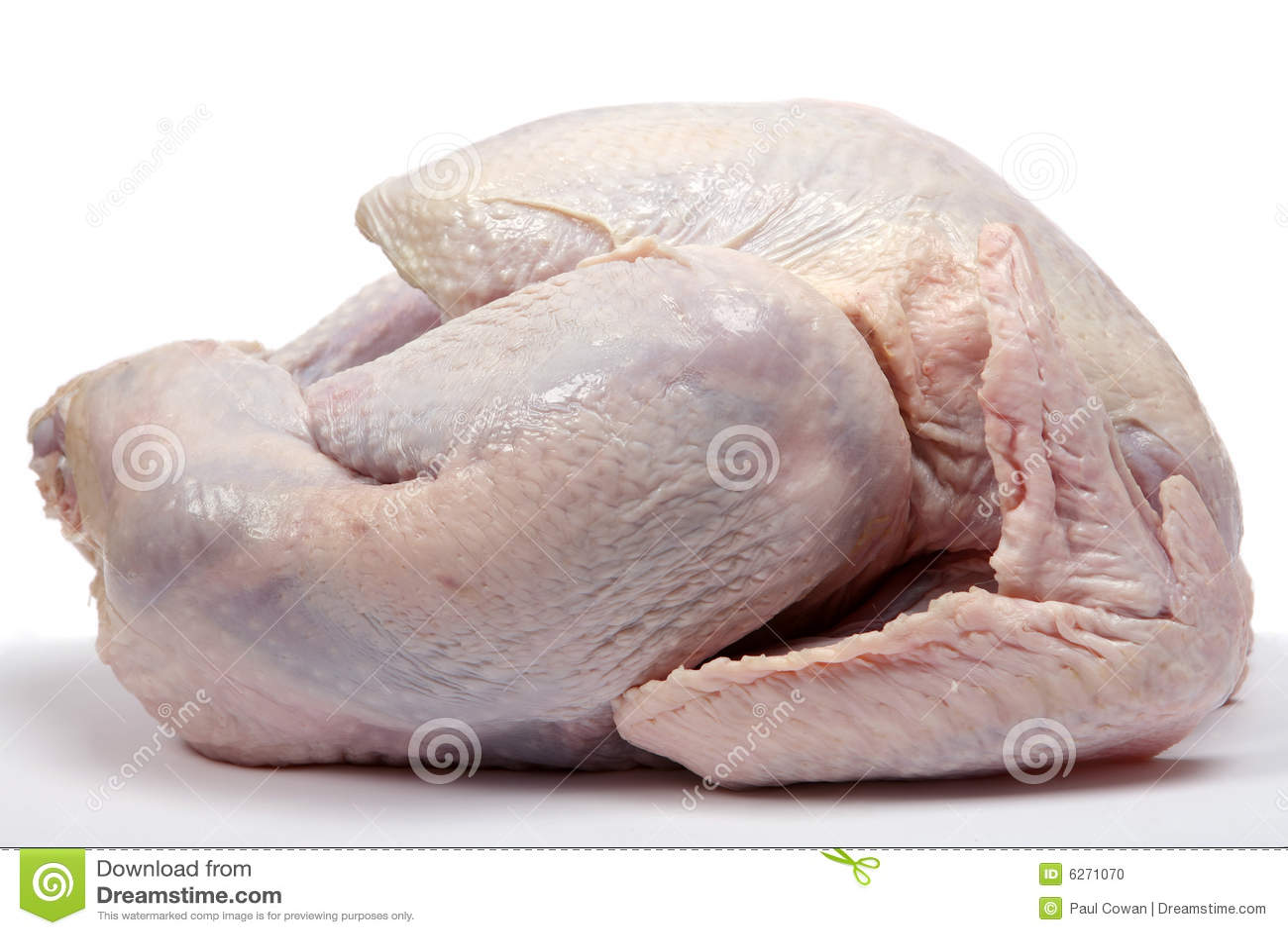 Clipart Goose