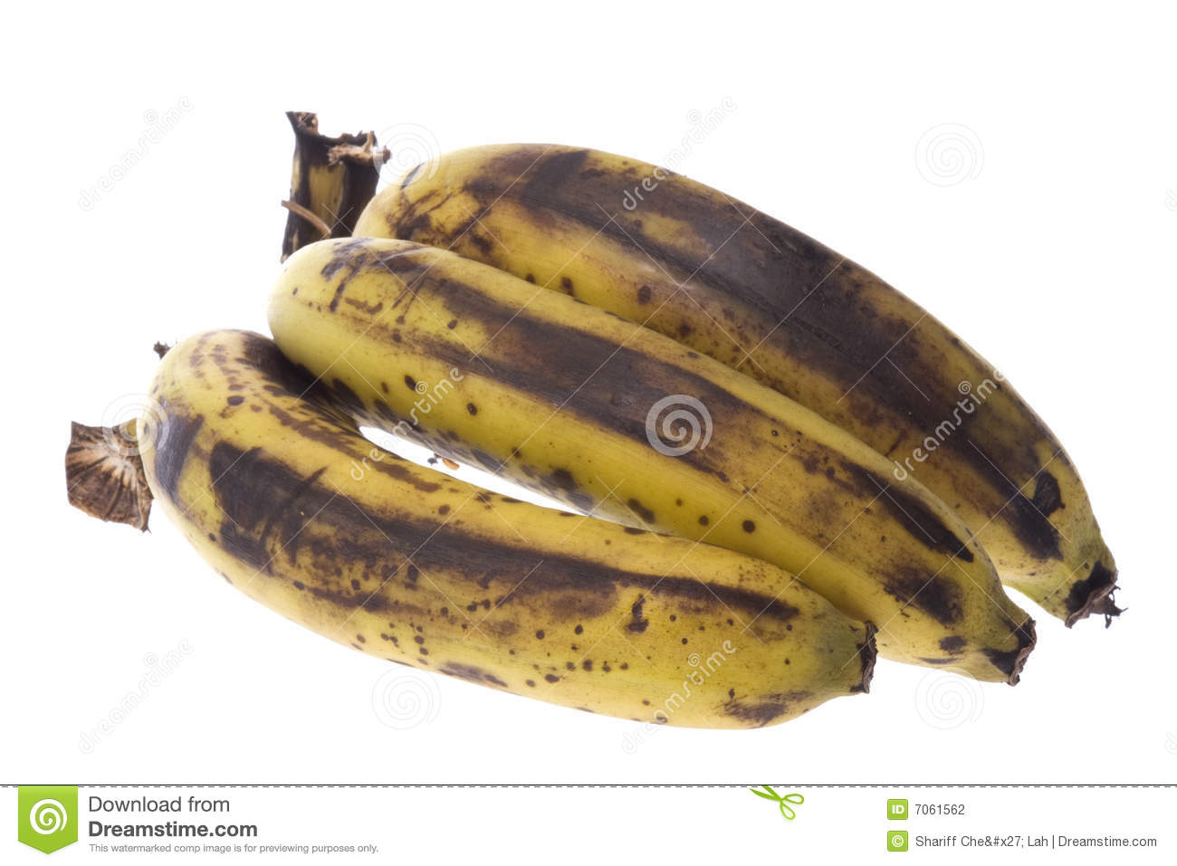 Over-Ripe Bananas Isolated