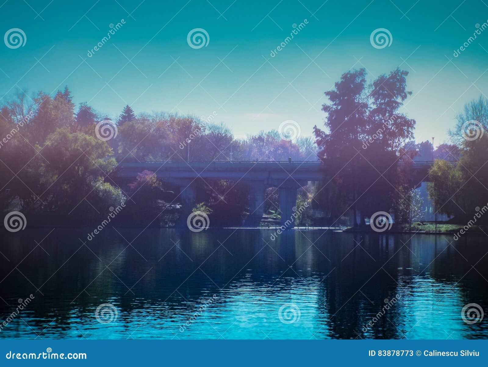 Overfiltered artistivc jesieni błękitny mgłowy ranek na jeziorze