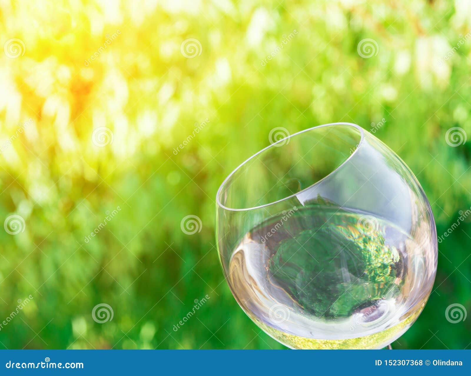 Overgeheld glas witte droge wijn op de groene achtergrond van gebladertewijnstokken Gouden zonlicht Authentiek Levensstijlbeeld