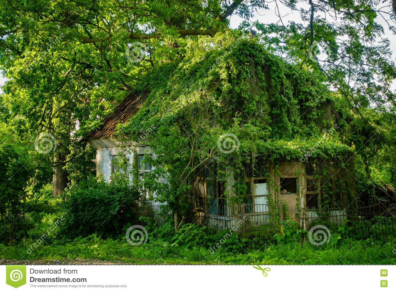 Overgrown House Facade In Countryside Stock Photo Image