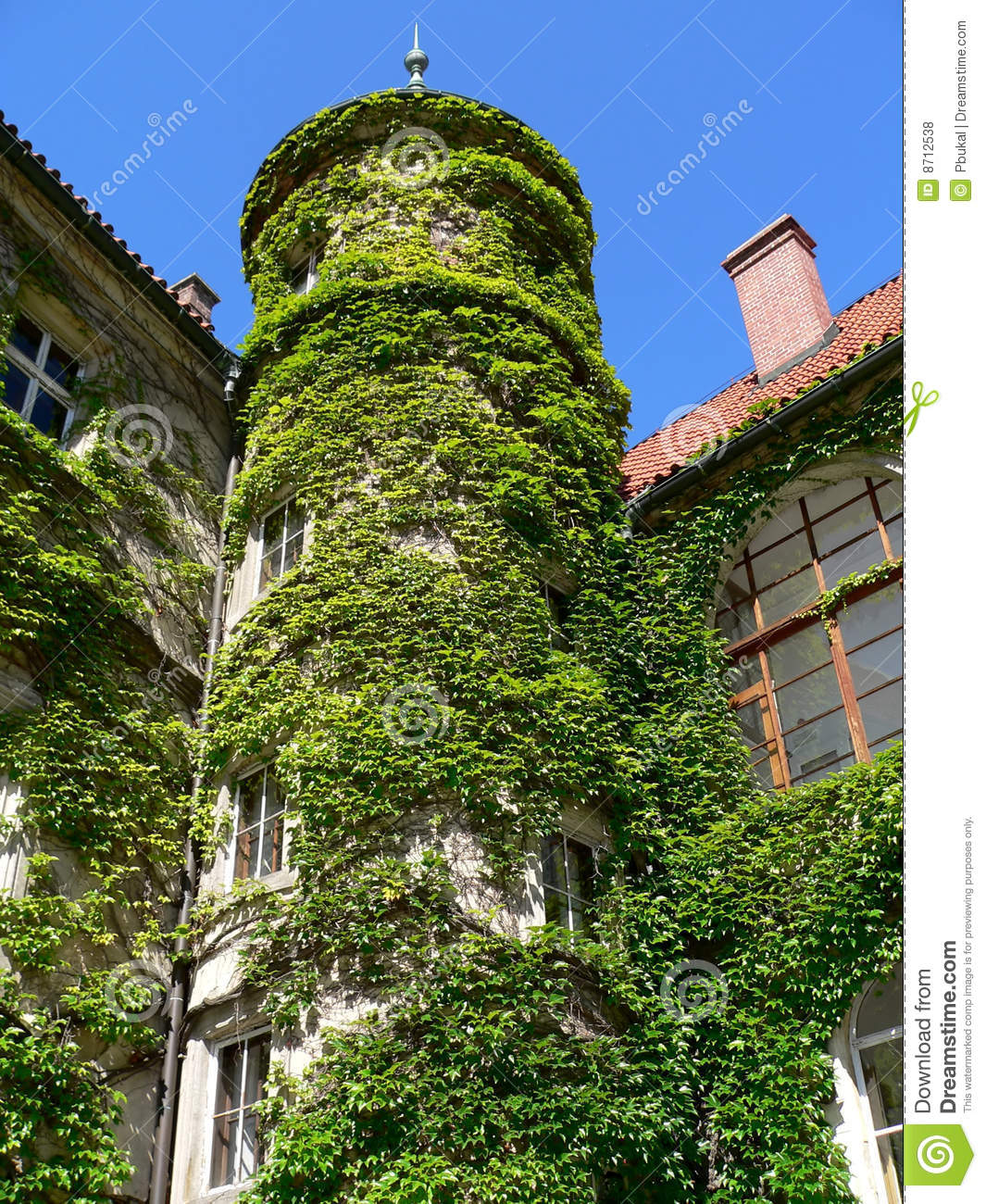 Overgrown Tower Royalty Free Stock Photos Image 8712538