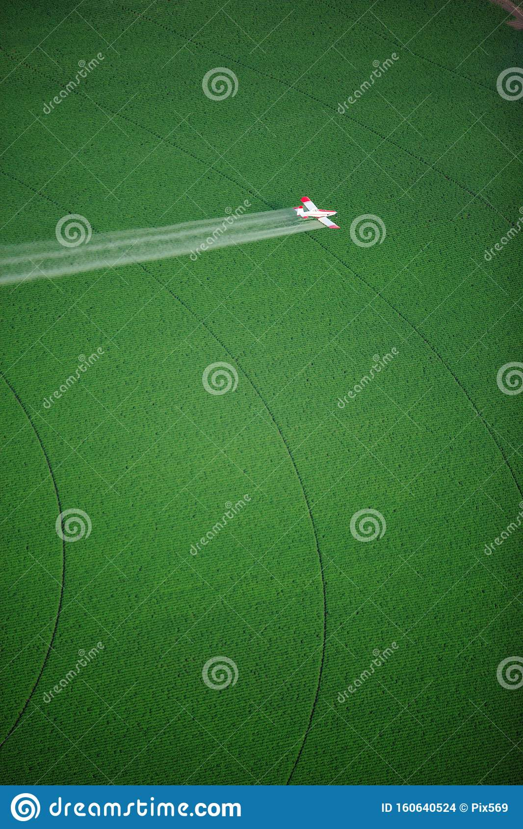 A Crop Duster Spraying A Green Farm Field. Stock Photo