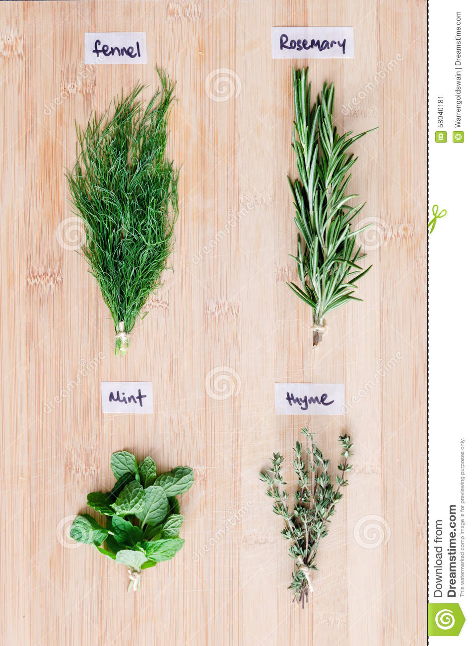 Overhead View Of Fresh Herbs With Names On Wooden Board Stock ...