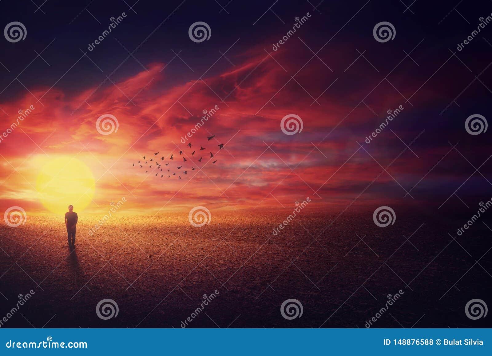 Overklig landskapsikt som en luffaregrabbkontur som framme g?r av h?rlig solnedg?ngbakgrund och en flock av f?glar som flyger upp