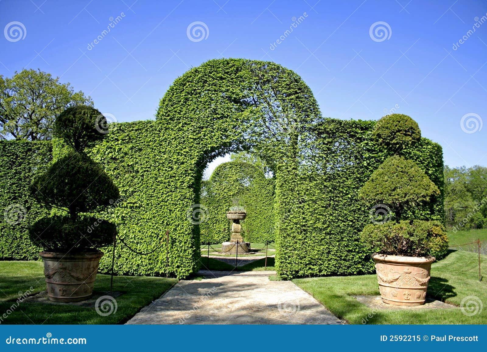Overspannen schurbs in tuin