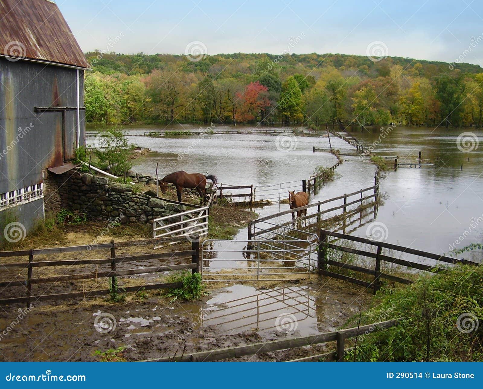Overstroomde Landbouwgrond