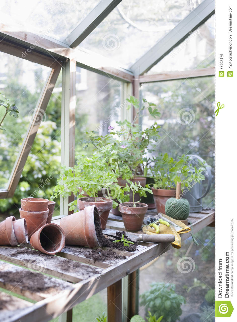 overturned pots in greenhouse stock photo - image: 33902176
