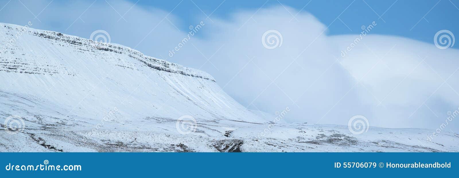 Overweldigend behandeld het plattelandsverstand van het de Winter panoramisch landschap sneeuw