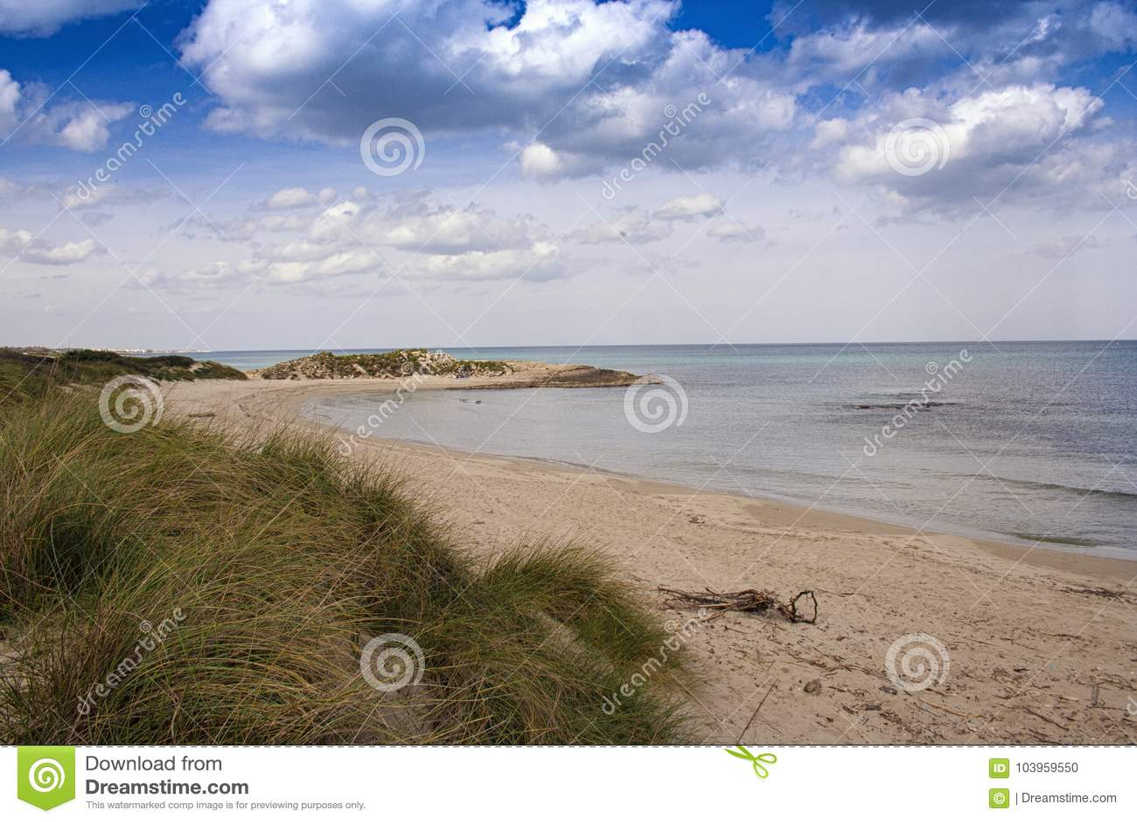 Overzees strand met vegetatie