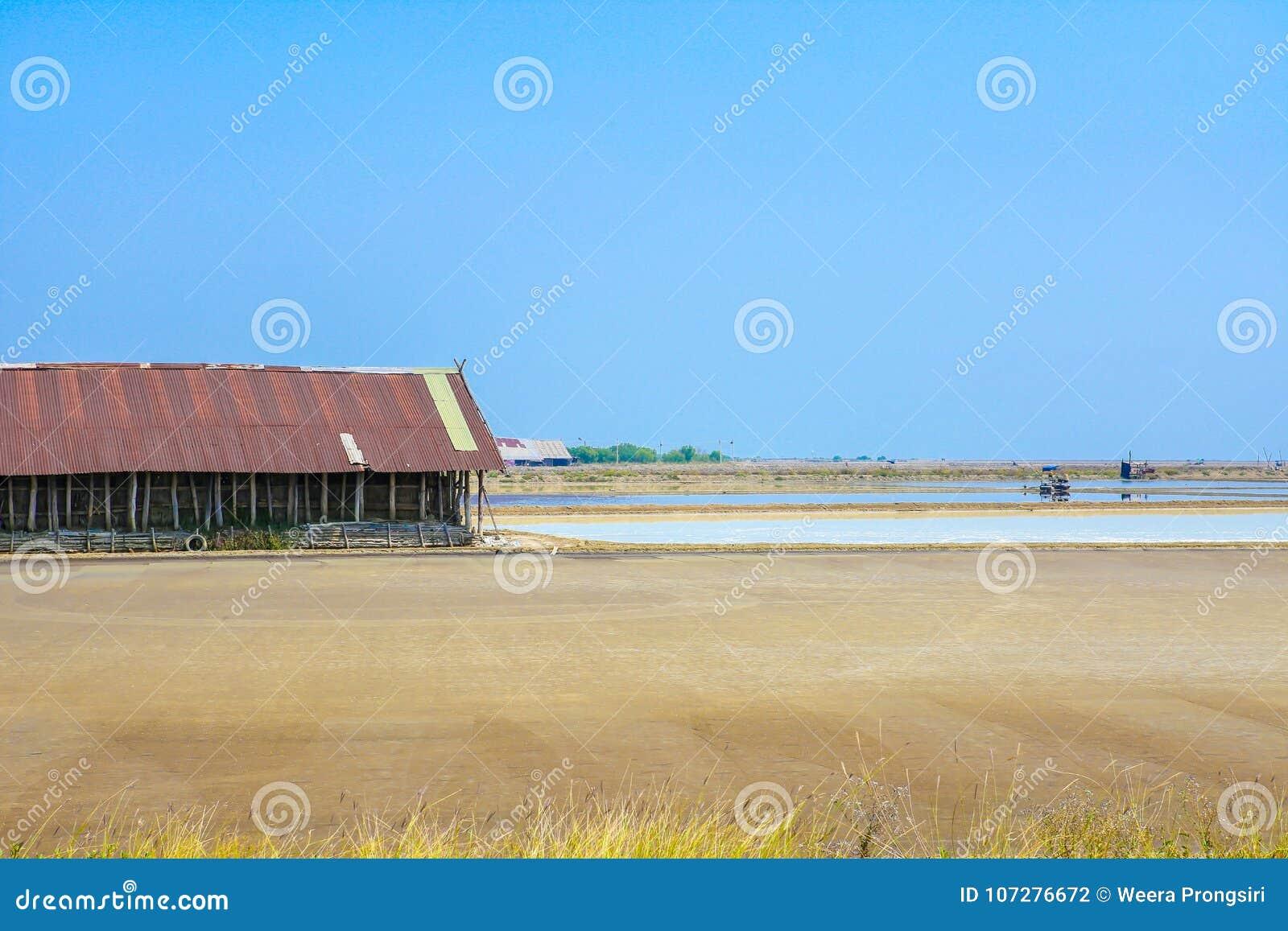 Overzees zout landbouwbedrijf