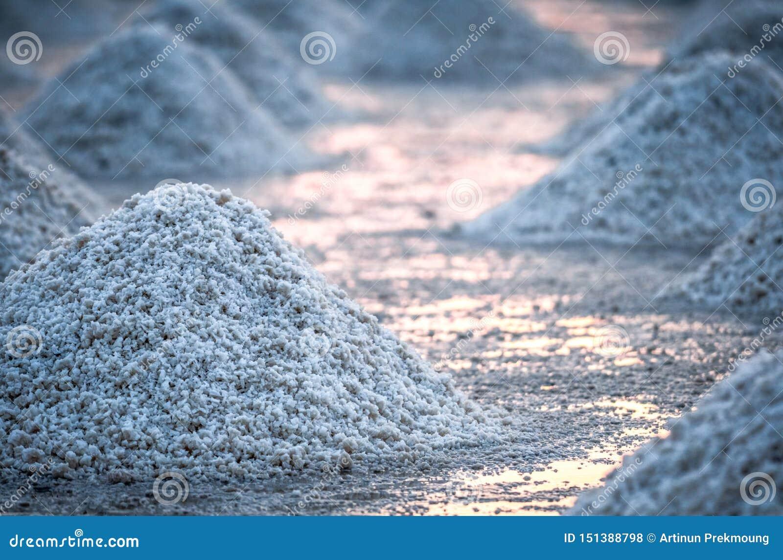 Overzees zout landbouwbedrijf in Thailand Organisch Overzees Zout r :