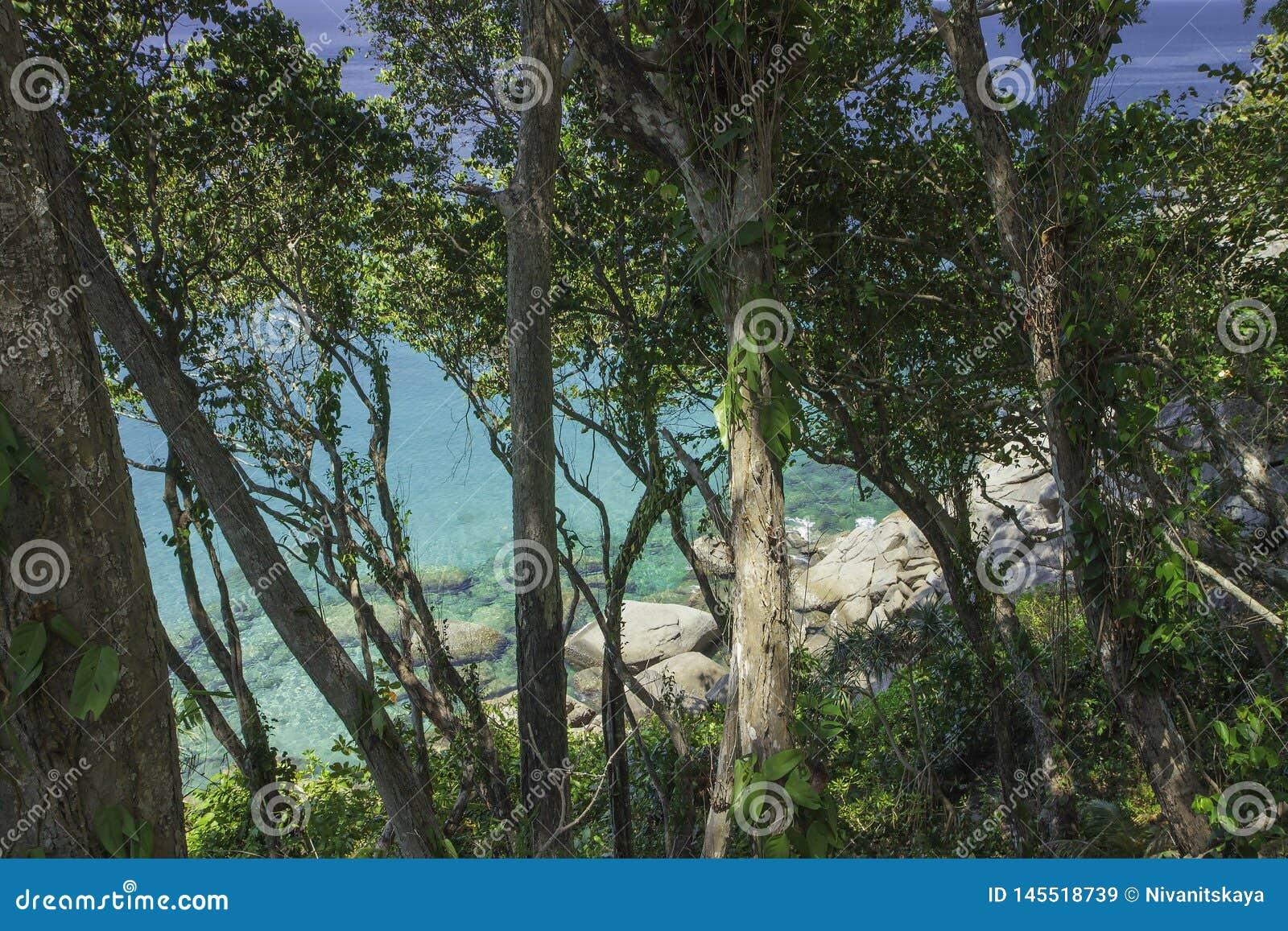 Overzeese mening door regenwoud om grote stenen en azuurblauw duidelijk water Mooie paradijslagune