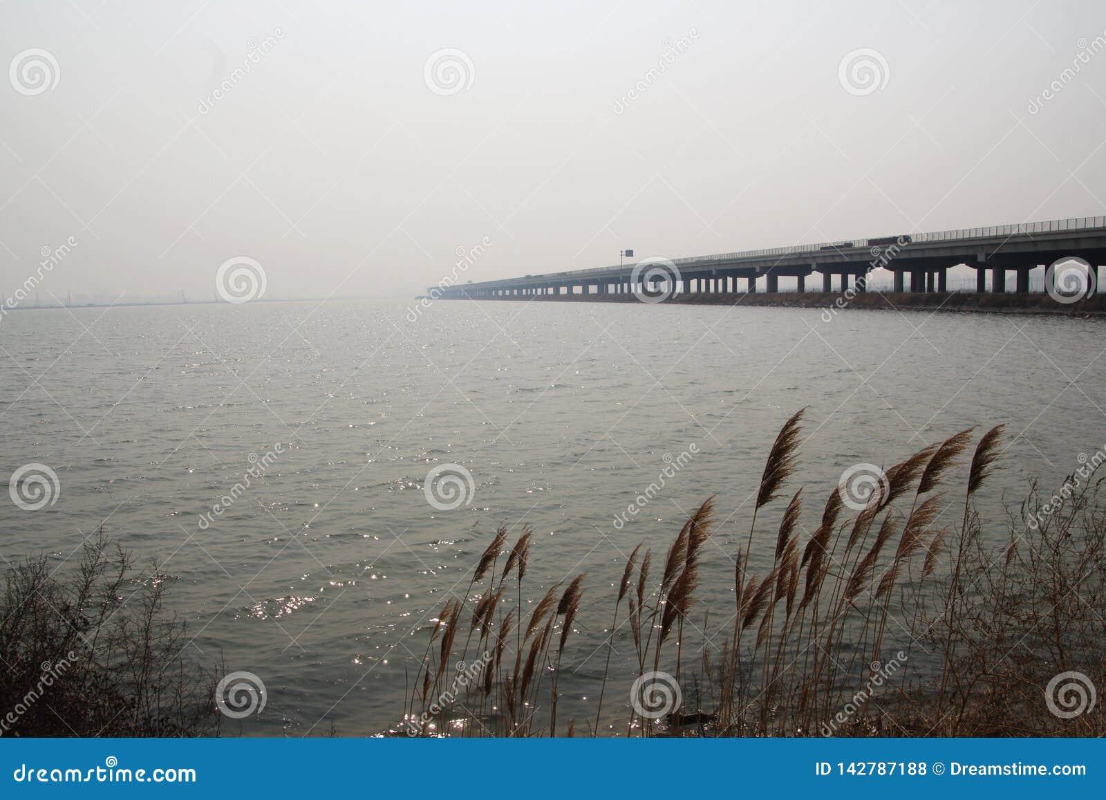 Overzeese oppervlakte en riet en bruggen