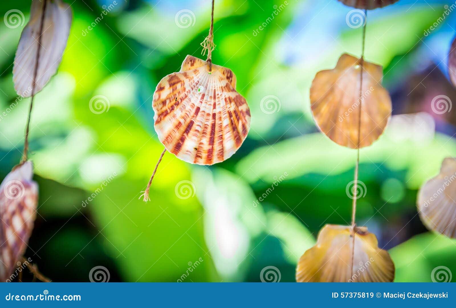 Overzeese Shells Herinneringen