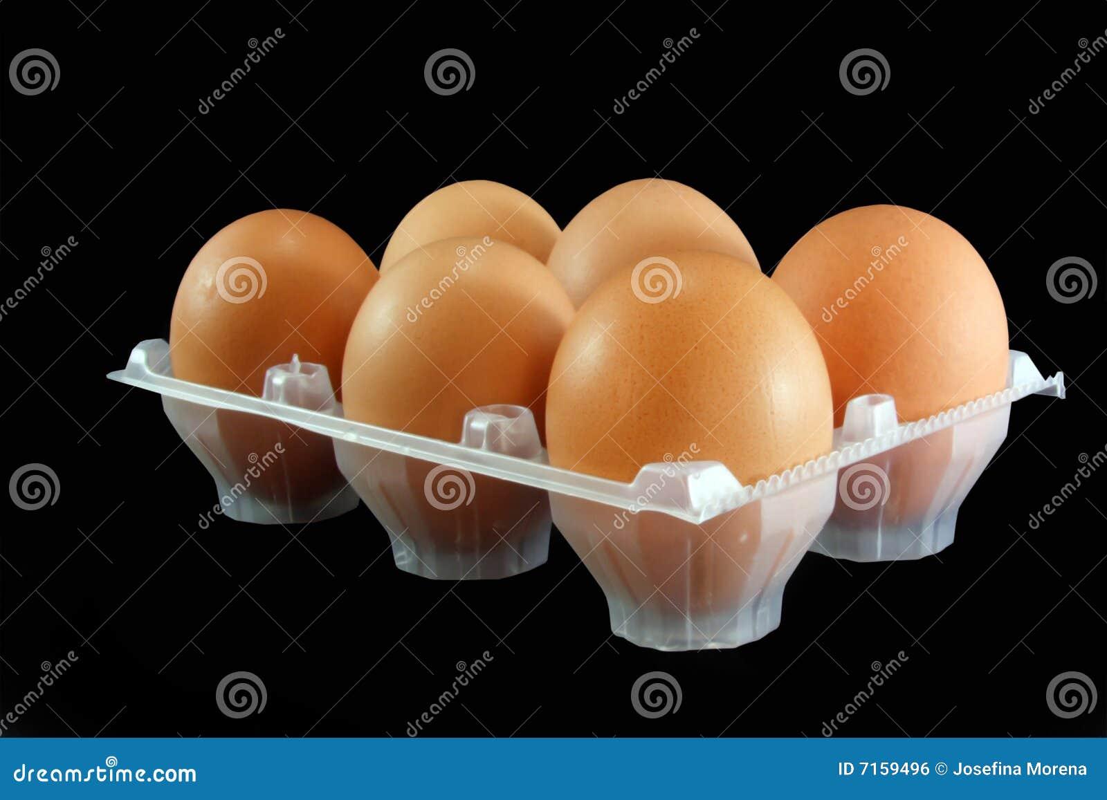 Ovos da galinha