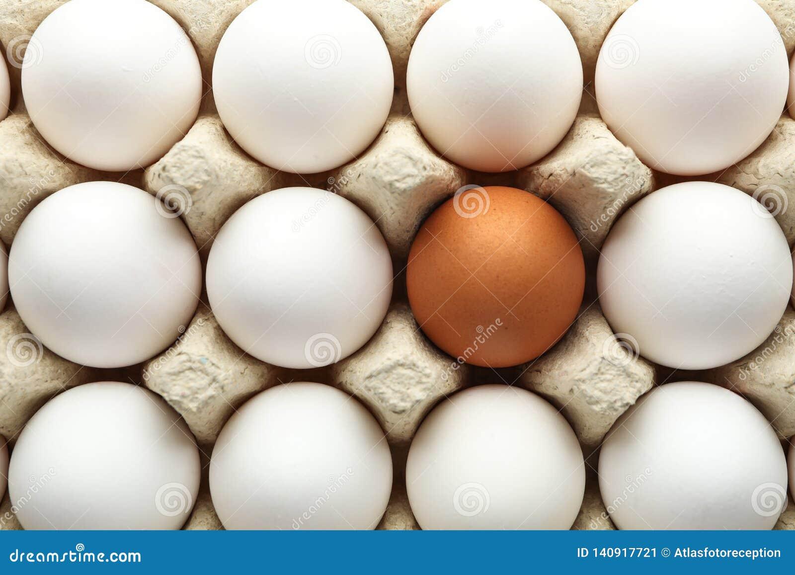 Ovos da galinha na caixa da caixa como o fundo