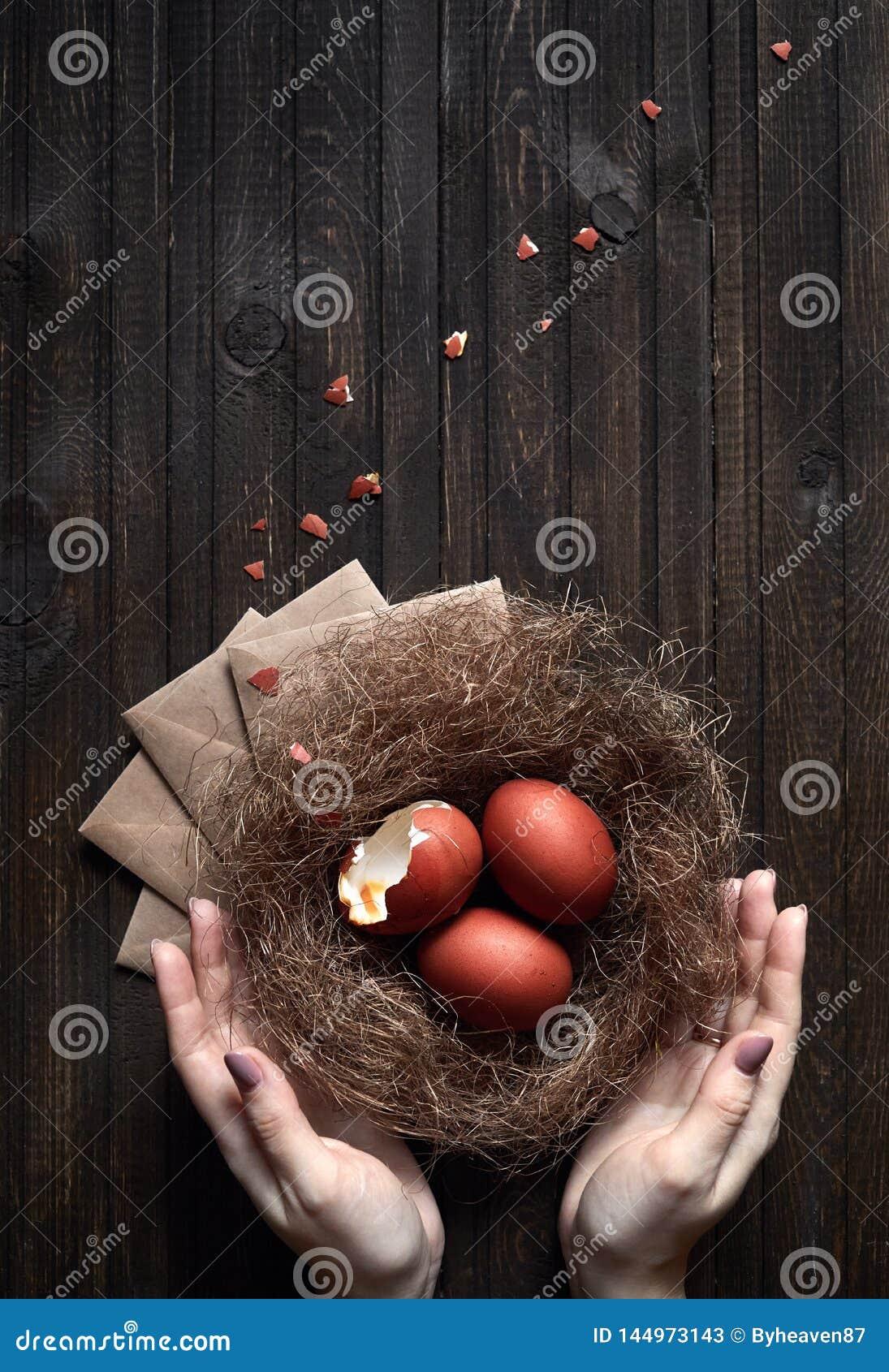 Ovos da p?scoa de Brown no ninho