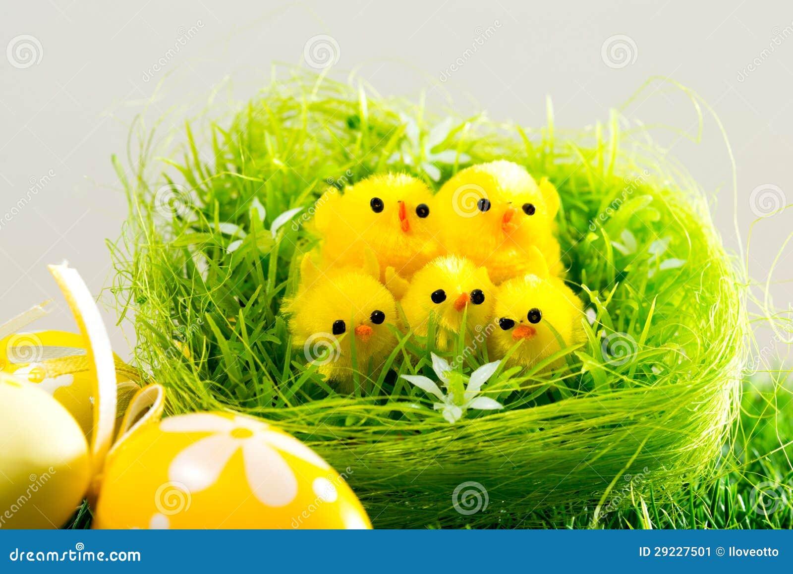 Download Ovos da páscoa e galinhas imagem de stock. Imagem de prado - 29227501