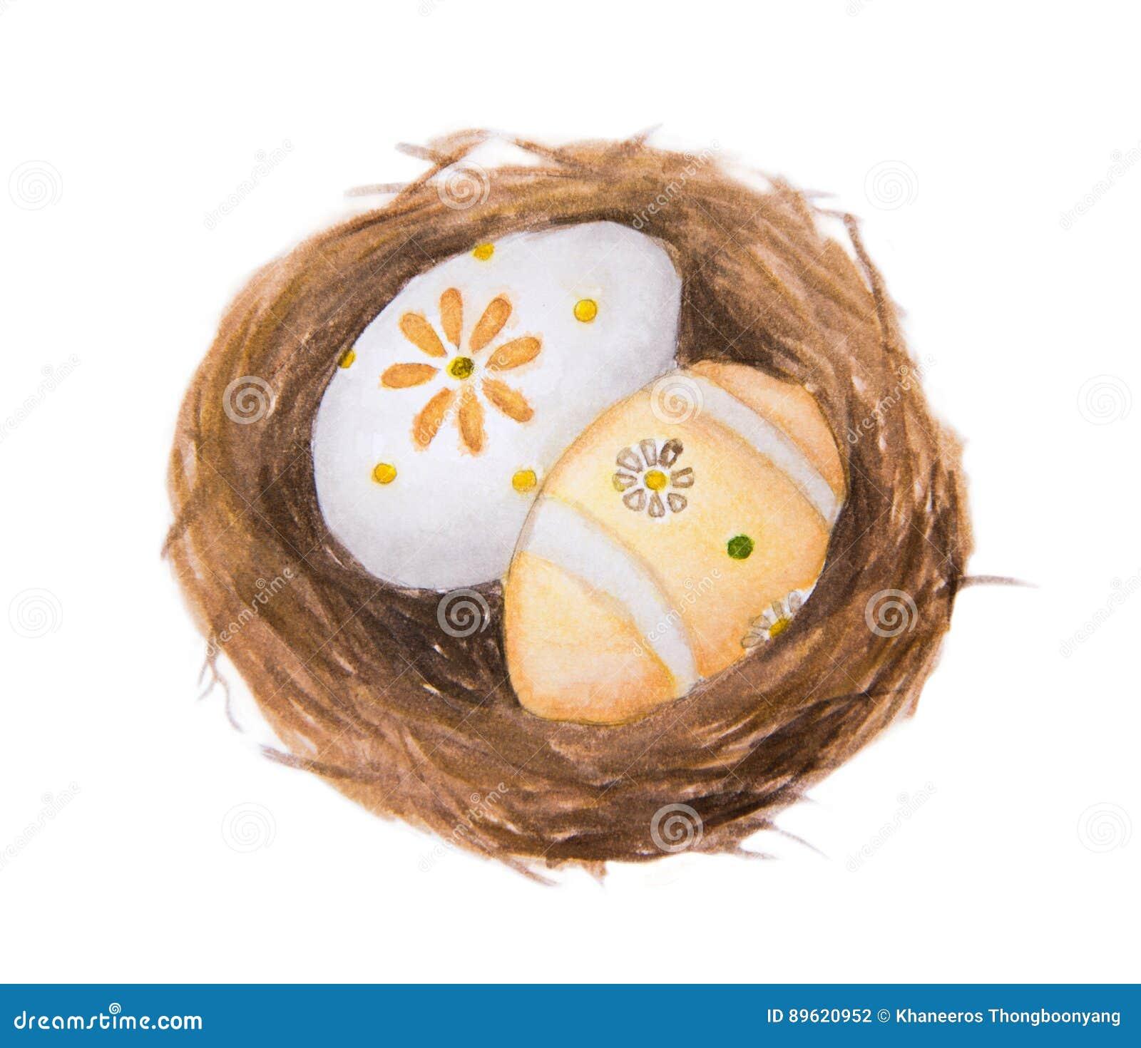 Ovos da páscoa na ilustração da pintura da aquarela do ninho isolada no fundo branco
