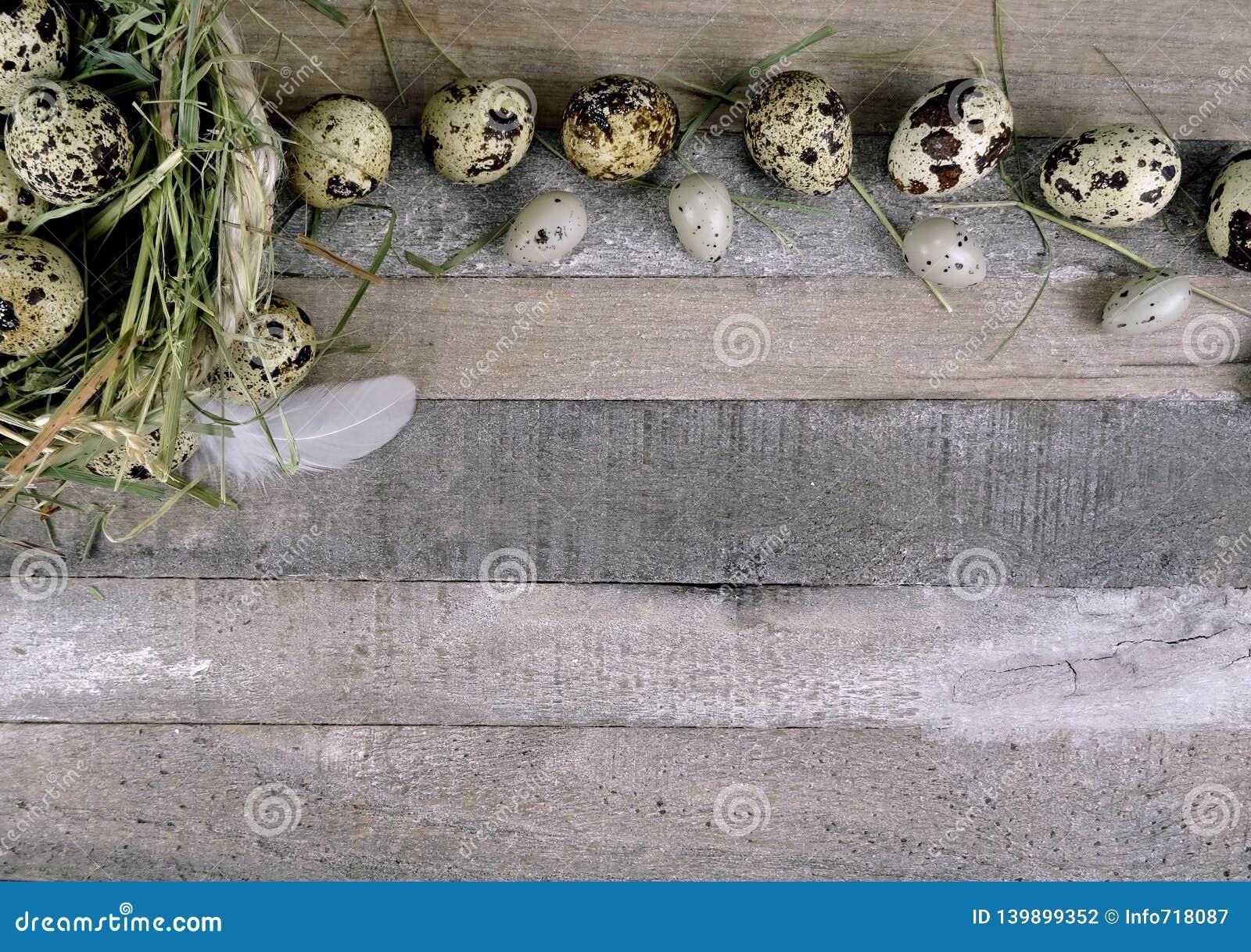 Ovos de codorniz com a decoração de pedra do ovo no fundo de madeira