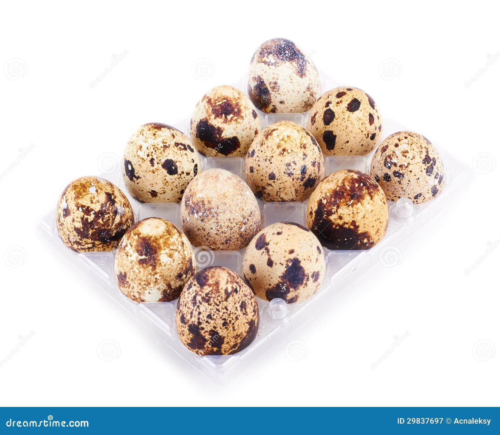 Ovos de codorniz em uma caixa isolada