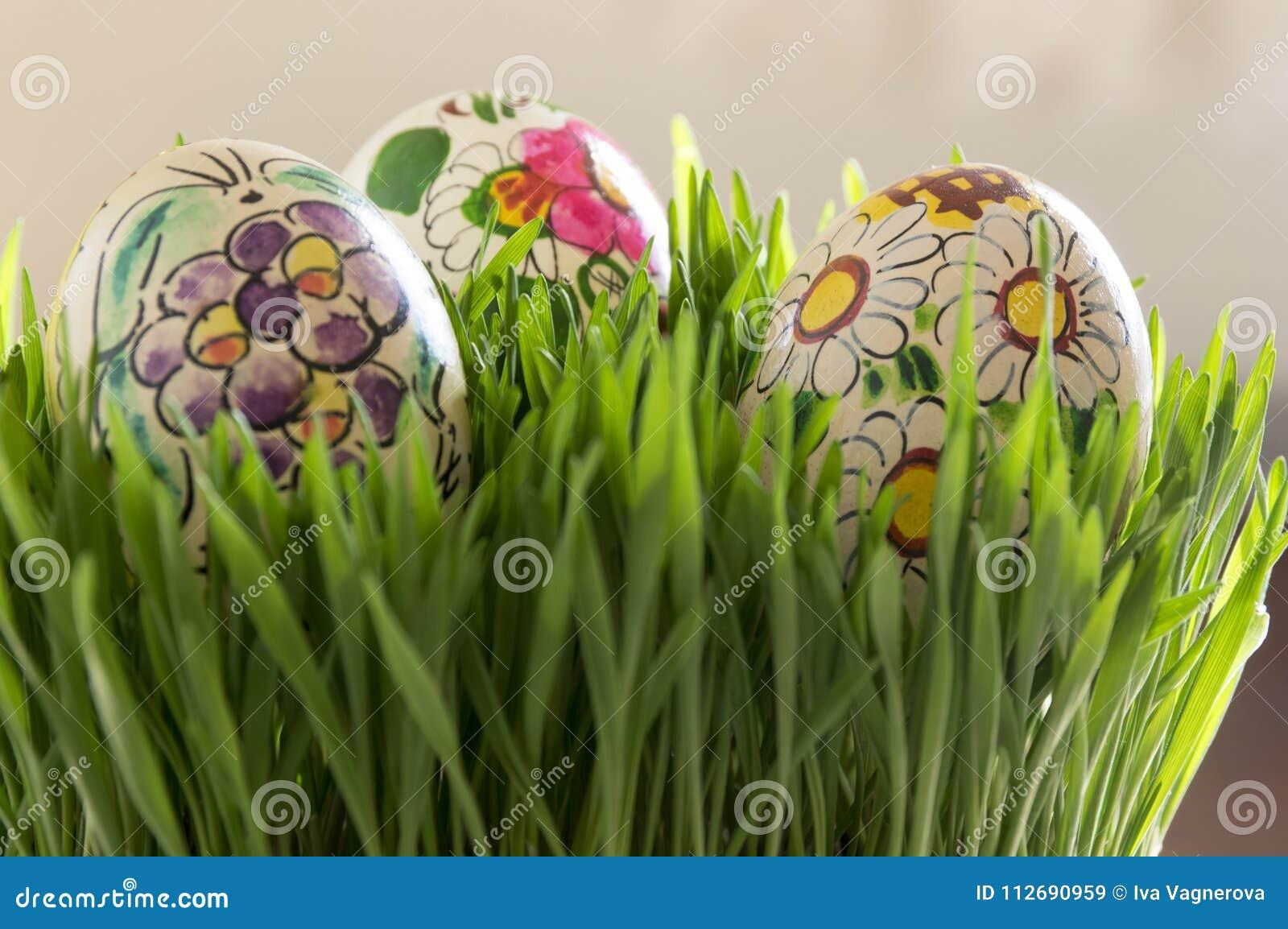 Ovos de Easter na grama verde fresca