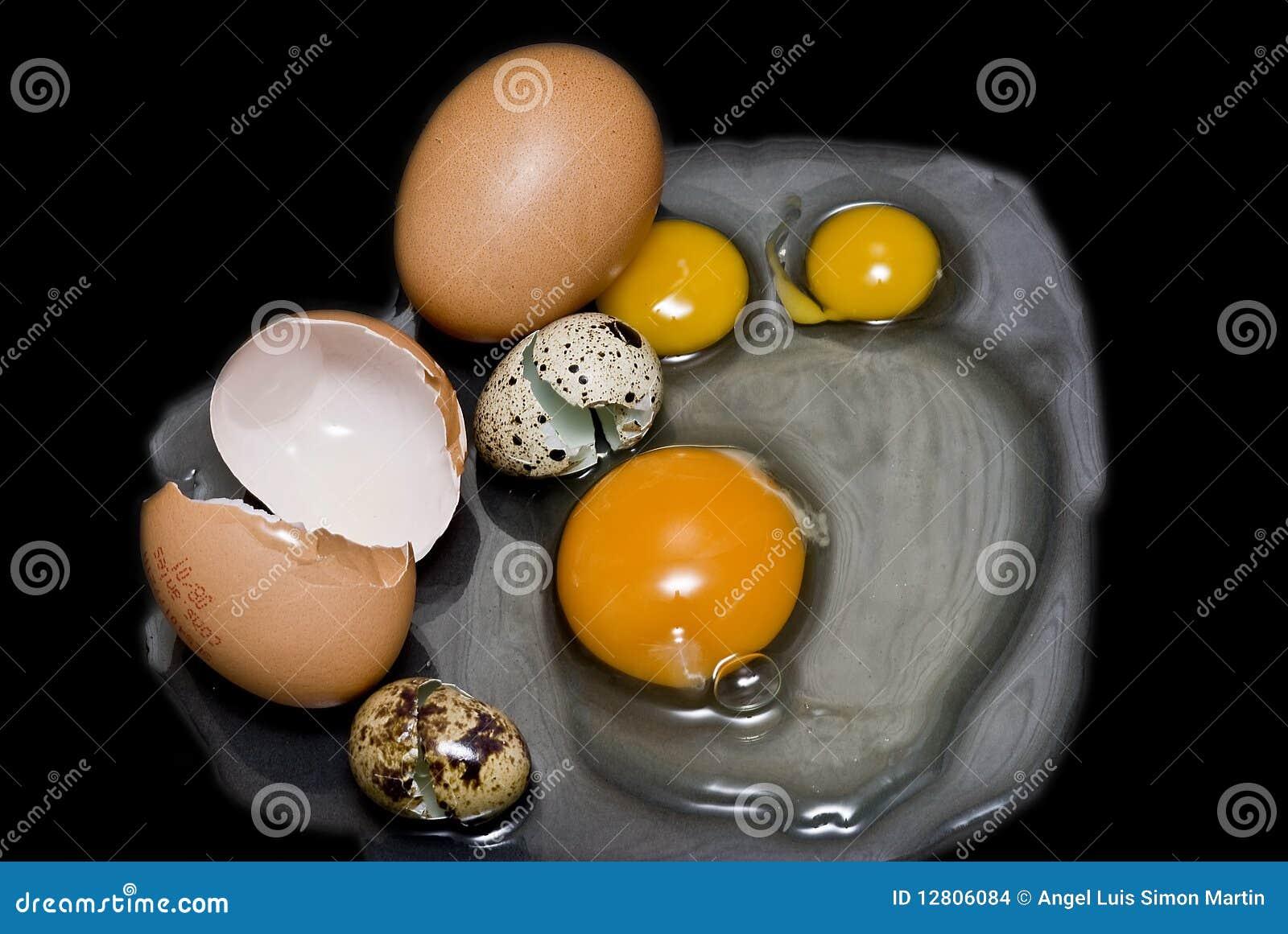 Ovos frescos diferentes para uma omeleta
