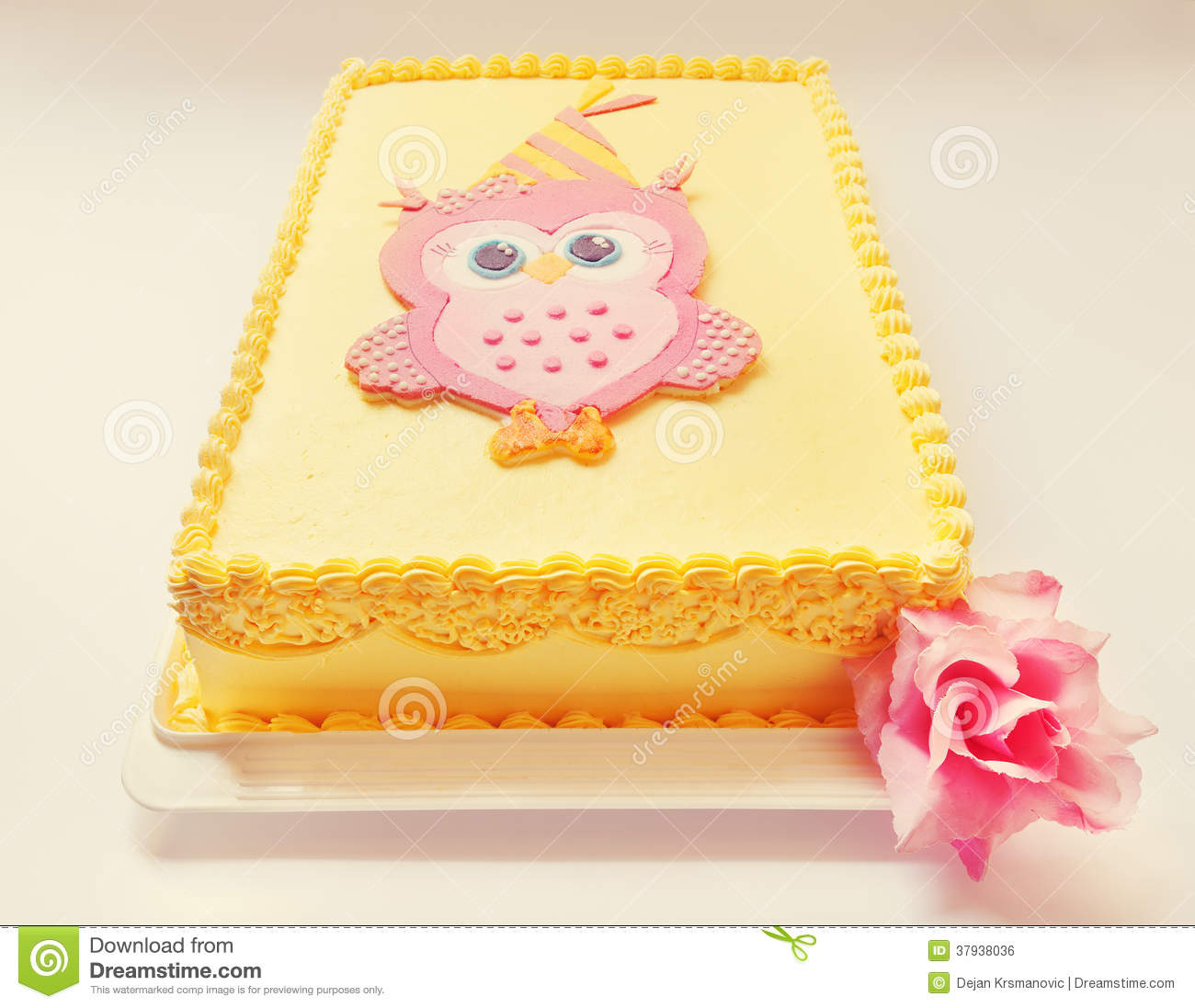 Outstanding Owl Birthday Cake Stock Photo Image Of Tasty Birthday 37938036 Funny Birthday Cards Online Elaedamsfinfo
