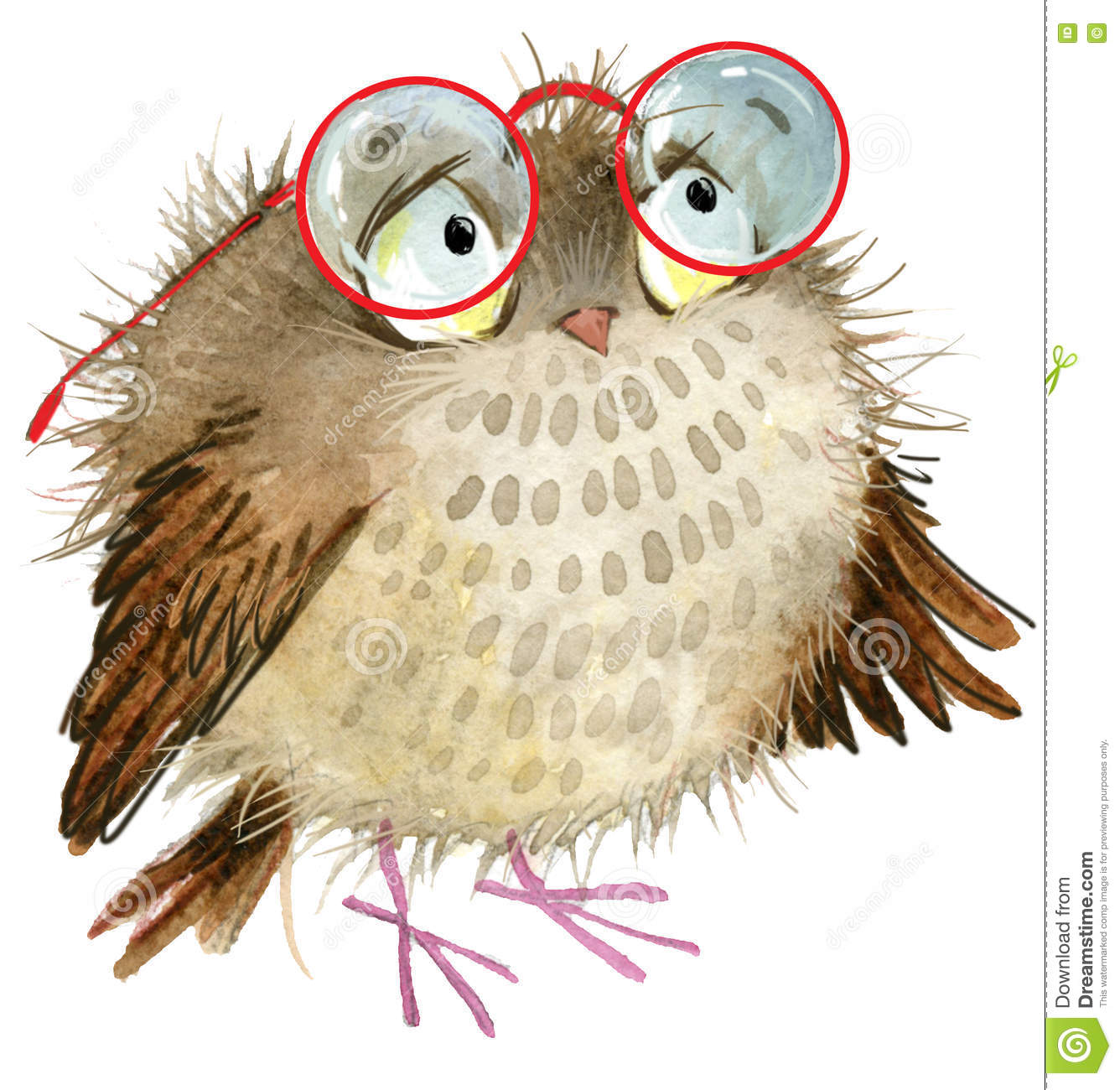 Owl. cute owl. cartoon bird