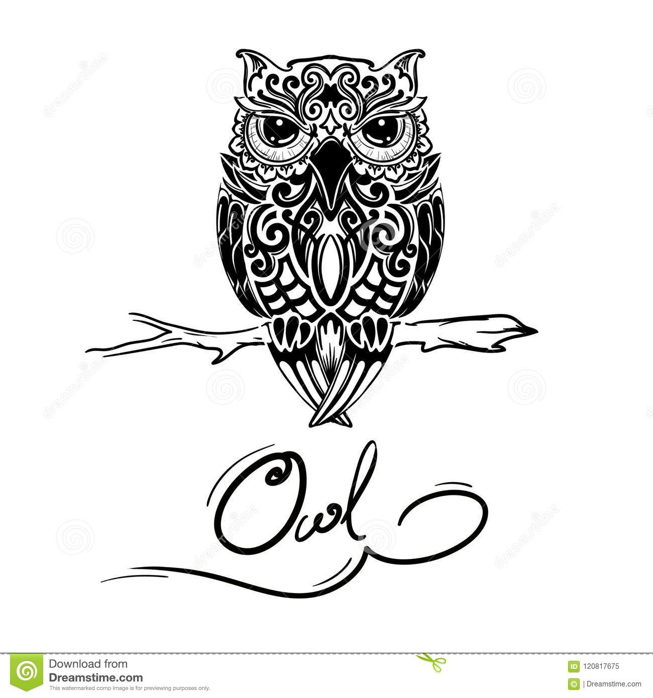 Owl Design Stock Illustration Illustration Of Animals