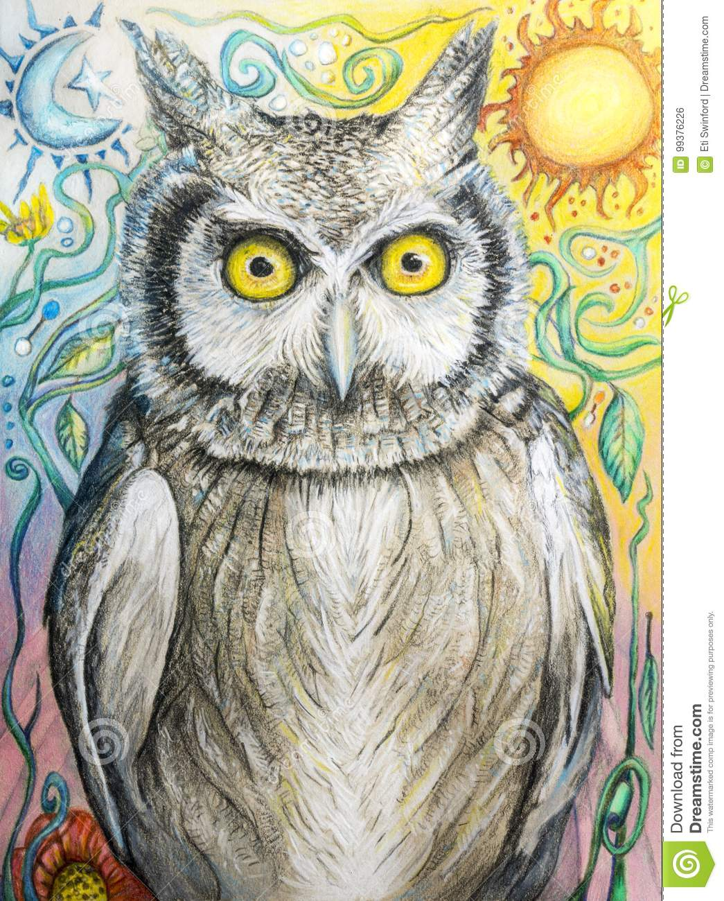 - Owl Drawing In Color Pencil With Moon And Sun Stock Illustration