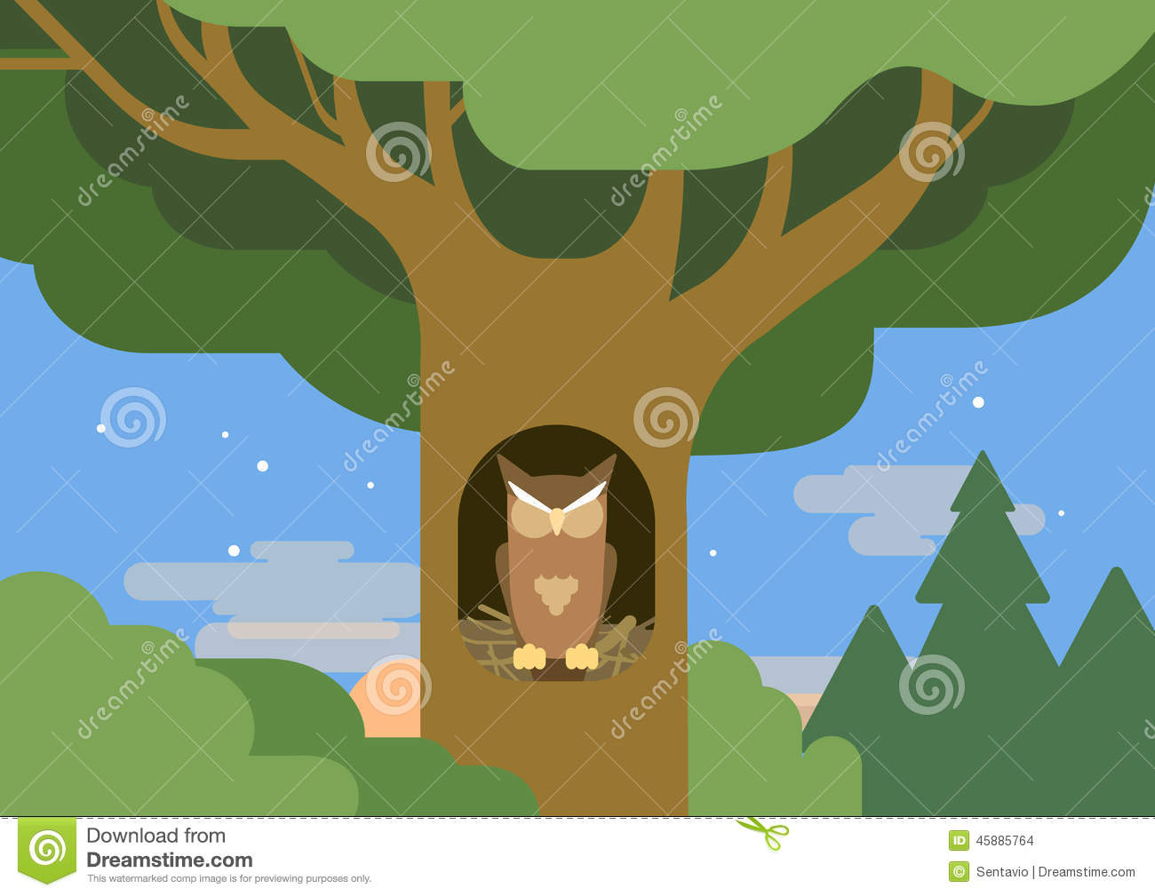 Owl Hollow Forest Habitat Flat Cartoon Vector Wild Animal Bird Stock ...