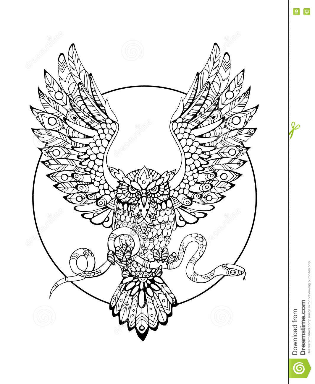 owl with snake coloring book for adults vector stock vector