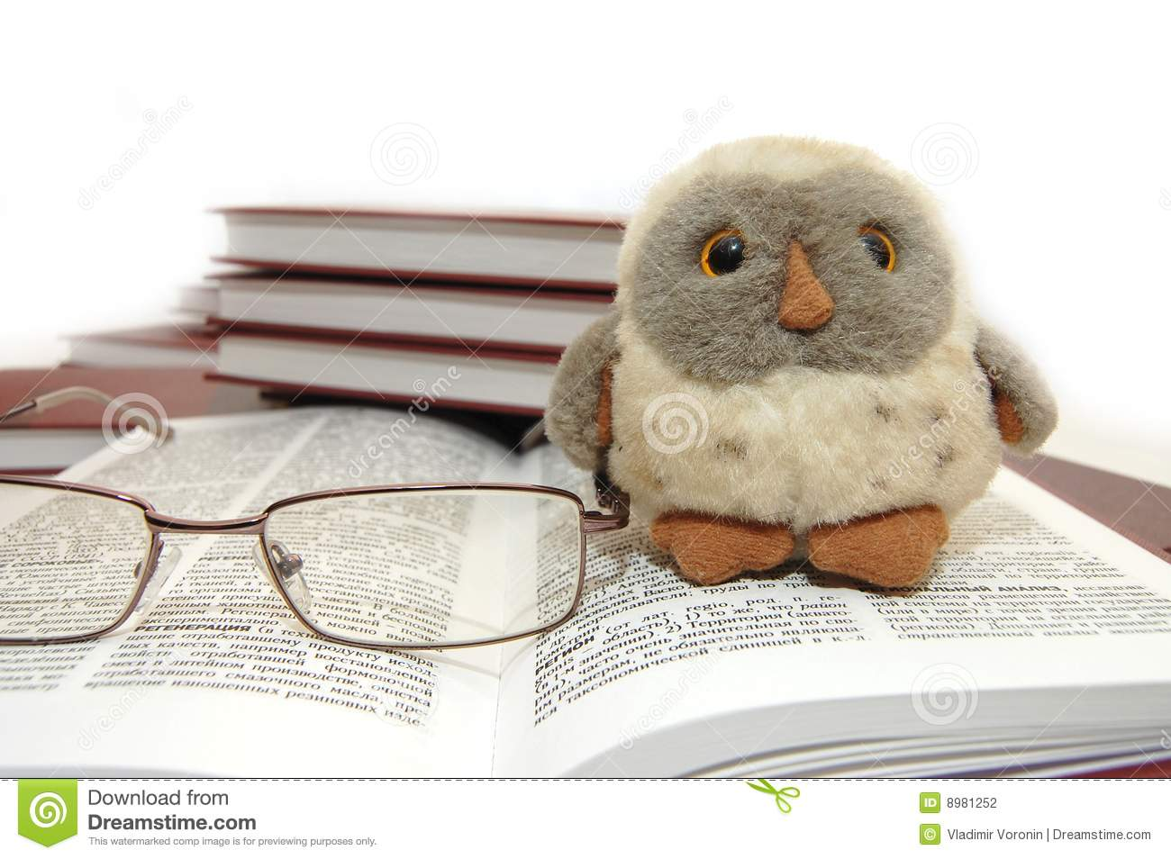 Owl A Symbol Of Wisdom And Knowledge Stock Photo Image Of